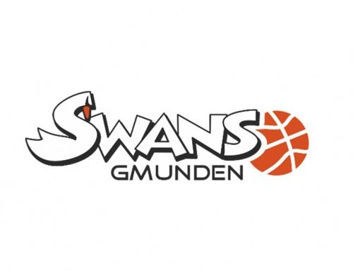 CONSULTING   Basket Swans Gmunden